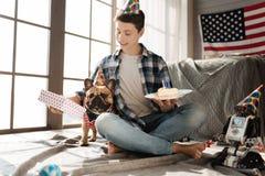 Petit chien drôle posant avec le foulard autour du cou Photo stock