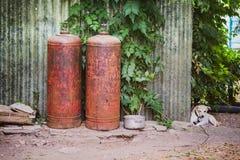 Petit chien sans abri Image libre de droits
