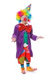 Petit clown Image stock