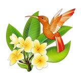 Petit colibri avec des fleurs de ketmie Ic?ne animale de colibri tropical exotique illustration libre de droits
