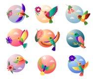 Petit colibri coloré réglé d'oiseau dans le style floral d'isolement sur le fond blanc illustration de vecteur