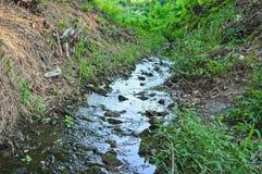 Petit courant de l'eau de montagne, traversant des bois Image libre de droits