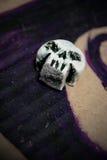 Petit crâne Image stock