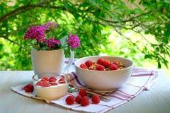 Petit déjeuner avec les framboises, le yaourt et la granola photographie stock libre de droits