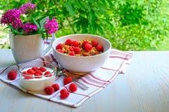 Petit déjeuner avec les framboises, le yaourt et le muesli images libres de droits