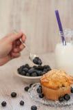 Petit déjeuner de petit pain de myrtille avec du lait et la main administrant Blueberri à la cuillère Image libre de droits