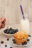 Petit déjeuner de petit pain de myrtille avec du lait et la main administrant Blueberri à la cuillère Photographie stock libre de droits