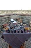 Petit déjeuner de safari Photo libre de droits