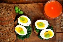 Petit déjeuner italien végétarien avec du jus et le sandwich d'orange sanguine Image stock