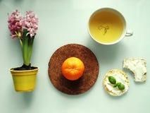 Petit déjeuner vert Photo stock