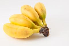 Petit der Banane nannte murrapo Musa-acuminata Stockbild