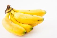 Petit der Banane nannte murrapo Musa-acuminata Stockfotos