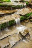 Petit or du vert n de cascade profondément dans les bois photo libre de droits