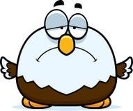 Petit Eagle chauve triste Image stock