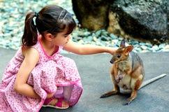 Petit enfant choyant un wallaby au Queensland, Australie photographie stock libre de droits