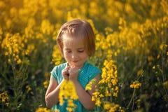 Petit enfant de portrait mignon sur le champ jaune dans le jour d'été ensoleillé photographie stock