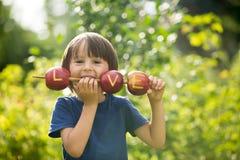 Petit enfant mignon, garçon, tenant un signe d'amour, fait à partir des pommes, l Photo libre de droits