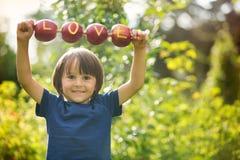 Petit enfant mignon, garçon, tenant un signe d'amour, fait à partir des pommes, l Photographie stock