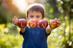 Petit enfant mignon, garçon, tenant un signe d'amour, fait à partir des pommes, l Photo stock