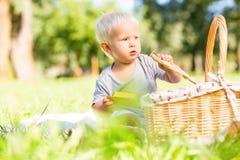 Petit enfant sérieux essayant de trouver des sucreries dans le panier images libres de droits