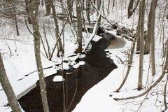 Petit fleuve en hiver Photos stock