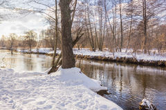 Petit fleuve en hiver Image stock