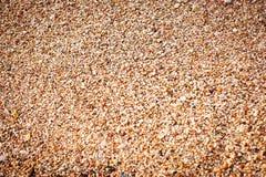 Petit fond de cailloux Nuances chaudes Photo libre de droits