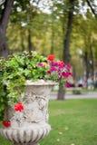 Petit fond de fleurs photos libres de droits