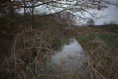 Petit fosse dans un paysage sauvage photos stock