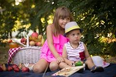 Petit frère et soeur presque s'asseyant sur l'herbe en parc photographie stock libre de droits