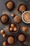 Petit fyra - fransk liten konfekt eller aptitretare Arkivfoto