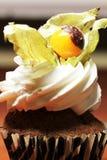 Petit gâteau avec le coqueret comestible Image stock