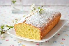 Petit gâteau avec le fromage blanc Photographie stock libre de droits