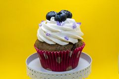 Petit gâteau décoré - vue de face photographie stock libre de droits