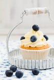 Petit gâteau de myrtille image libre de droits