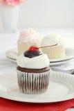 Petit gâteau de vanille de chocolat photo stock
