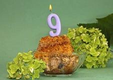 Petit gâteau fait maison de fête sur le 9ème anniversaire Photographie stock libre de droits