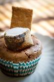 Petit gâteau grillé de smore Image stock