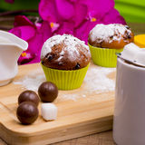 Petit gâteau lumineux avec du sucre glace et le chocolat Photographie stock libre de droits