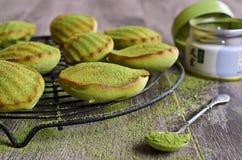 Petit gâteau vert Photographie stock libre de droits