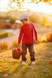 Petit garçon adorable avec son ami d'ours de nounours en parc sur le su Images stock