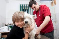 Petit garçon au vétérinaire avec son crabot Photos stock