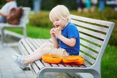 Petit garçon avec le panier-repas et le casse-croûte sain photos stock
