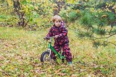 Petit garçon ayant l'amusement sur des vélos au foyer sélectif de forêt d'automne Image libre de droits