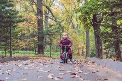 Petit garçon ayant l'amusement sur des vélos au foyer sélectif de forêt d'automne Photos stock