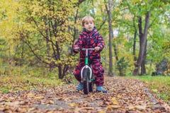 Petit garçon ayant l'amusement sur des vélos au foyer sélectif de forêt d'automne Image stock