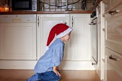 Petit garçon curieux, gingembre de observation paner des biscuits dans le four Image libre de droits