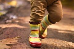 Petit garçon dans des bottes en caoutchouc marchant dans le concept d'automne de forêt image stock