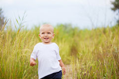 Petit garçon dans le domaine Image stock