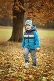 Petit garçon de portrait en parc d'automne image stock